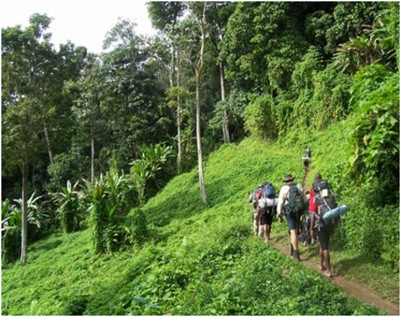 Kokoda Track (creative commons)