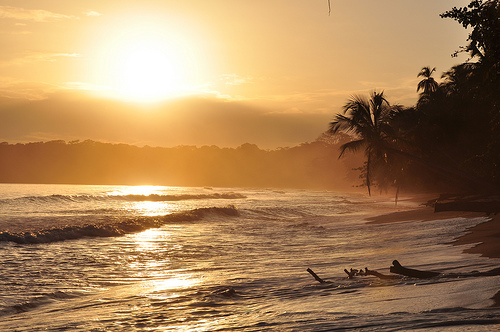 Beach in Cahuita, Costa Rica. Photo by Armando Maynez, used under Creative Commons