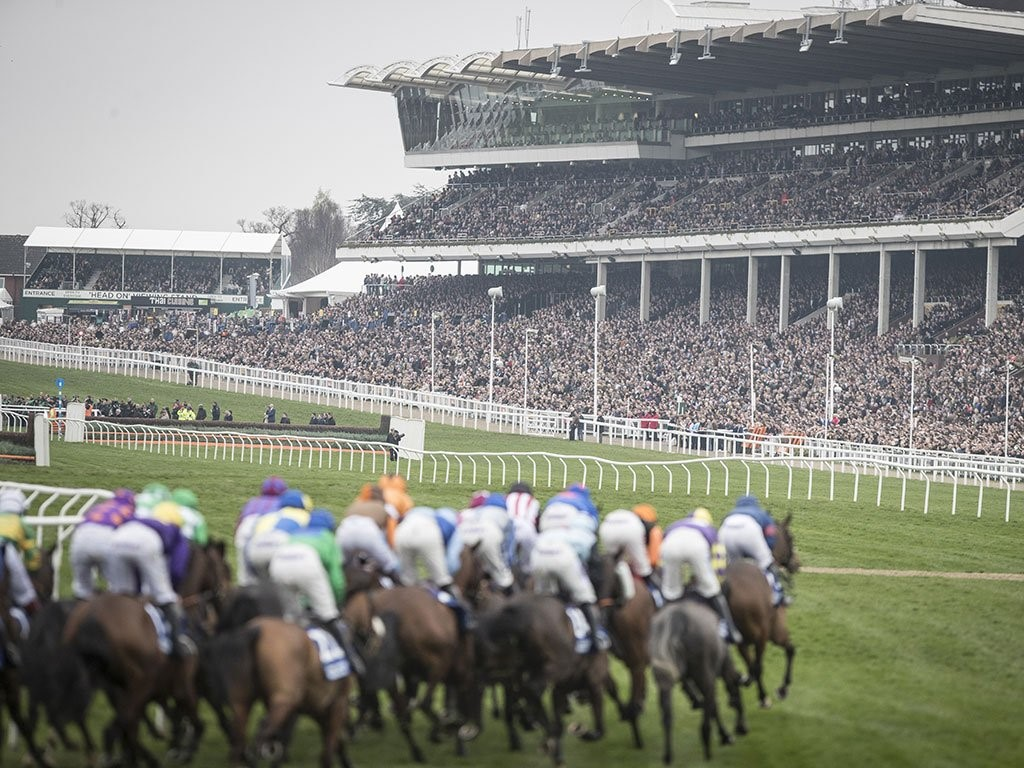 Why Cheltenham Festival Is A Must-Visit Venue